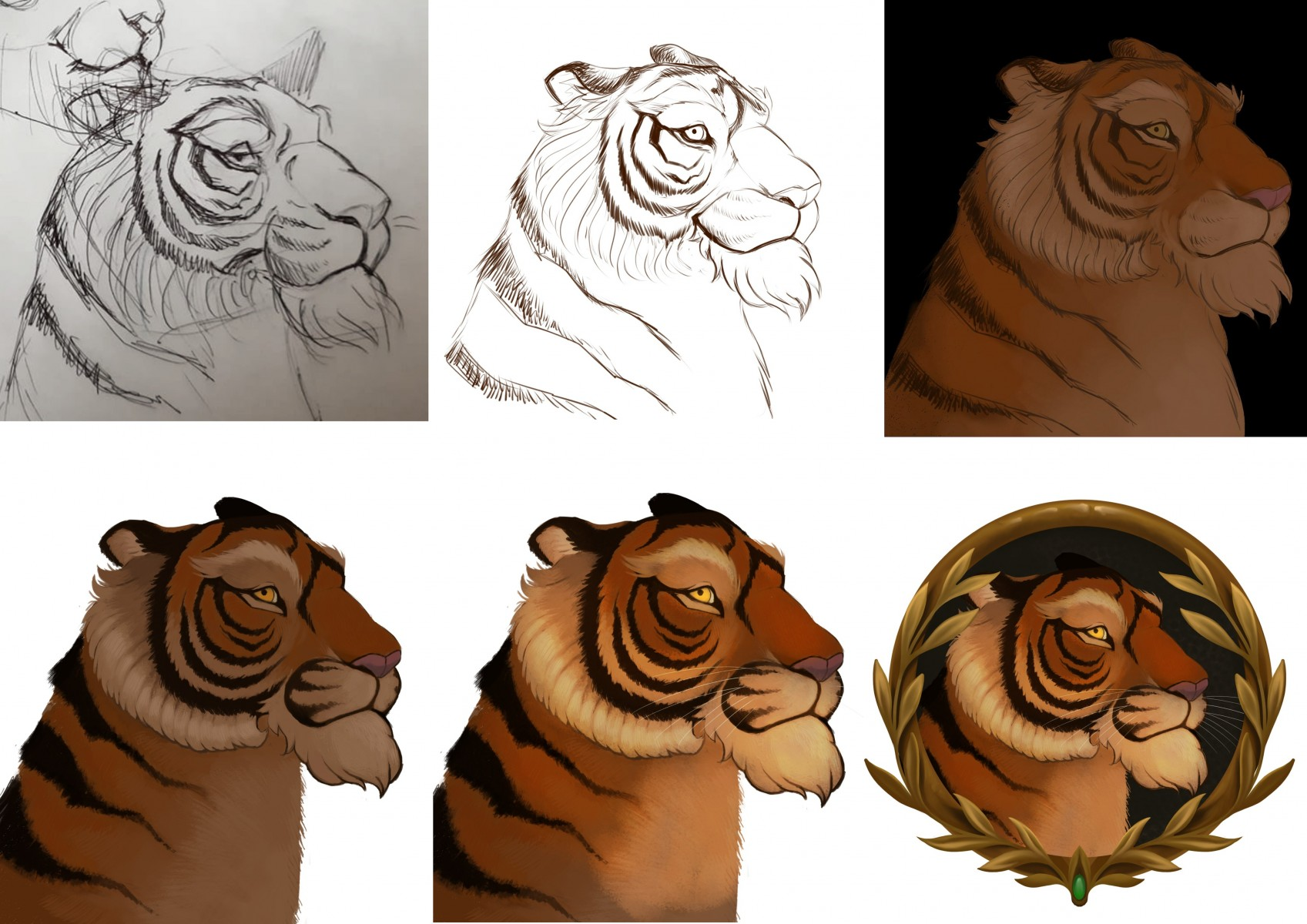 Nicolas tiger portrait process from sketch to finish